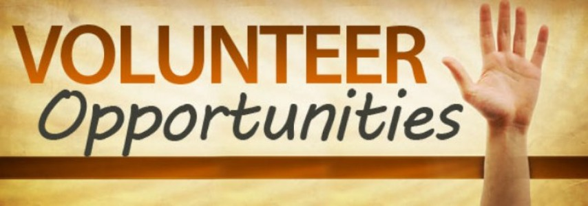 Dissertation help services volunteer opportunities